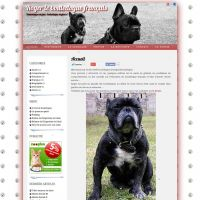 capture-rogerlebouledogue-site